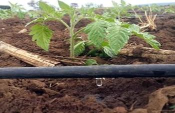 Câmar rejeita projeto contra agricultures