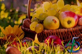 Outono: 4 dicas para decorar sua loja